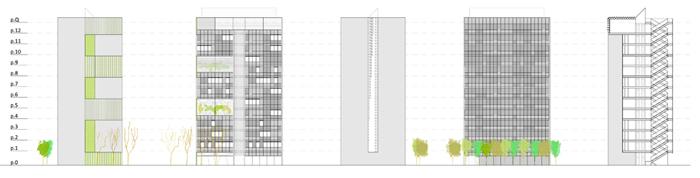 BARRIO-CANILLAS_proyecto_Secciones-edificacion-III